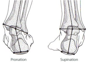 foot suppination and pronation